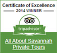 Kathy wins a Certificate of Excellence from Trip Advisor!